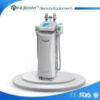 China Hot sale cool shaping cryolipolysis fat freezing machine / cryotherapy equipment on sale