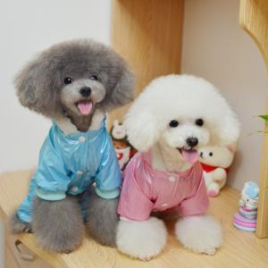 China High Quality Pink, Blue Windbreaker 100% Cotton Personalized Dog Clothes on sale