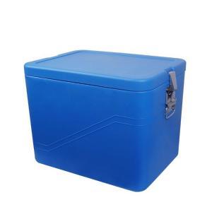 China Fashion Large Plastic Picnic Ice Box Cooler /  HIPS HDPE PU Foam Car Cool Box on sale