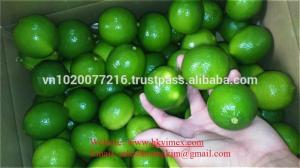 China Sell lemon seedless, good price/ fresh lime/ fresh lemon/ lime cheap on sale