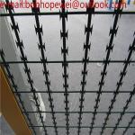 anti climb 75x150mm hot dip galvanized razor weld mesh/Welded Razor Wire Fence/razor weld mesh
