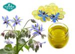Borage Oil 1000mg Softgels Concentrated GLA for Women's Health