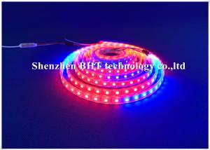 China TM1934 IC Addressable Full Color LED Strip 5050 Rgbw 50m Aluminium Profile on sale