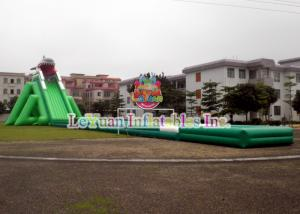 China Shark Giant Inflatable Water Slide Commercial PVC Tarpaulin Certificated on sale