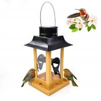 China Solar Parrot Feeder LED Light Bird Feeder Station Hanging Pigeon Crow Parrot Outdoor Balcony Bird Feeding on sale