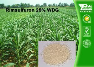 China Rimsulfuron 25% WDG Selective Weed Killer For Lawns / Selective Herbicide For Maize on sale