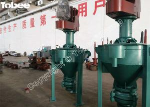 China Tobee 6SV-AF Froth Slurry Pump on sale
