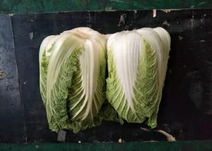 China Fresh Organic Chinese Cabbage No Stain Green Color For Salad Factory on sale