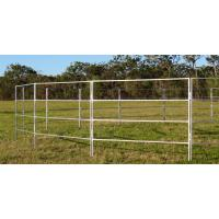 Round Corral Panels Heavy Duty 6 Oval Rail - Cattle Yards Horse Panels Round