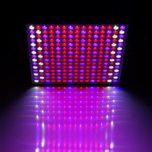 China Hydroponic Indoor Plant Grow Light on sale