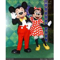China Princess Cartoon costume Disney mouse,Plush dress mascot Mickey Minnie for costum on sale