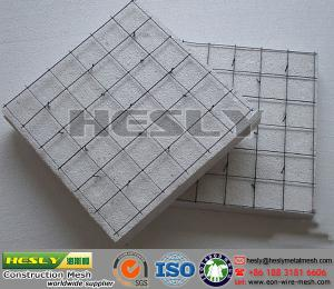 China EPS 3D wire mesh panel, 3D construction wire mesh panels, EPS construction Mesh Panel on sale