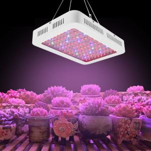 China High power greenhouse indoor led grow light full spectrum 1200w led grow light on sale