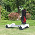 Hot sales electric golf skateboard with golf cart