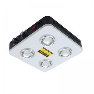 China Greenhouse 50 / 60Hz Led Grow Light Kit With RoHS Certification 800W cob led grow light on sale