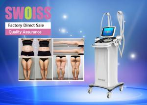 China Vertical Laser Slimming Machine , 350W Ultrasound Fat Reduction Machine on sale