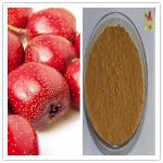 Natural 5% 80% Flavones Hawthorn Berry / Fruit Extract