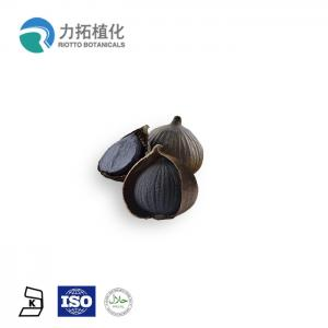 China Plant Powder China garlic factory offers best natural black garlic extract on sale