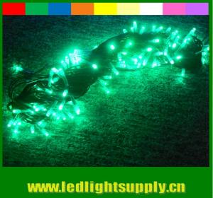 China New arrival rgb color changing led christmas lights 110v 24v waterproof on sale