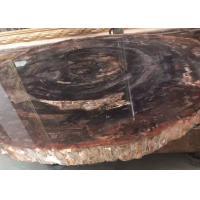 Polished Brown Natural Semi Precious Stone Slabs Petrified Wood