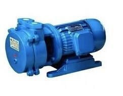 China Small Volume Liquid Ring Vacuum Pump (SK) on sale