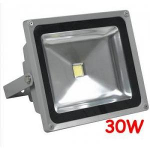 China High efficiency IP65 Waterproof 30W Outdoor LED Floodlight bulbs fixtures for Tunnel on sale