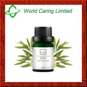 China Óleo essencial cas#68647-73-4 do extrato puro natural da planta de óleo da árvore do chá on sale