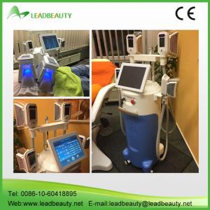 China antifreeze membranes for cryolipolysis machine hot selling  at home on sale
