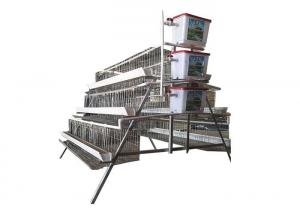 China 160 Birds A Type Poultry Chicken Cages For Poultry Farming Laying Hens on sale