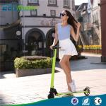 China Eco Rider 5 inch electric balance scooter , two wheel electric kick scooter with CE wholesale