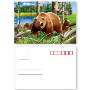 China Fashion Eco - Friendly 3D Plastic Cards / Lenticular Postcard Printing on sale