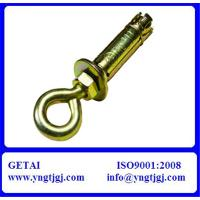 China Heavy Duty Eye Bolt Shield Anchor YZP Finish on sale