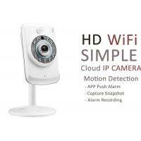 Wireless Pan Tilt Zoom IP Camera Megapixel With APP Notifications Motion Detection