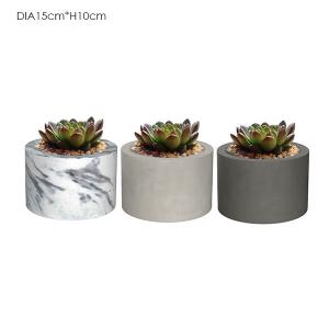 China Decorative Cement flower pots on sale