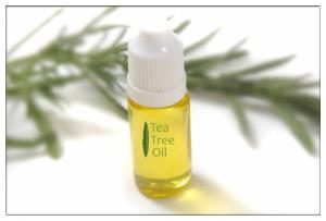 China tea tree oil bulk for Household cleaner,Tea Tree Oil for Acne,Tea Tree Oil for Psoriasis and Eczema on sale