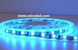 China 60LEDs/Meter SMD5050 IP67 Waterproof 12VDC/24VDC Flexible Strip Light on sale