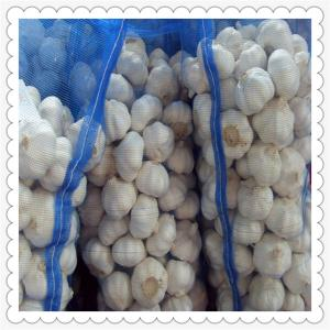 China chinese fresh vegetables raw material fruits wholesale garlic price on sale