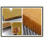 High Temperature Resistance Moisture Proof Aramid Honeycomb Core Sheet For Further Carving