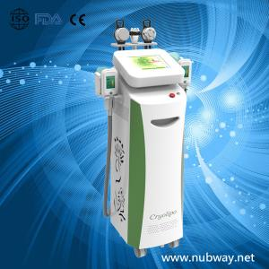 China five Handles--cellulite Reduction Cryolipolysis Slimming Machine / cryolipolysis Fat on sale