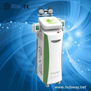 China zeltiq coolsculpting body slimming machine 5 handles Cryolipolysis Slimming Machine on sale