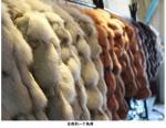 Женщина ягнится меховая шыба шерстей и длинный не 2014 моделей женщины кожи кожи Хайнинг разделов