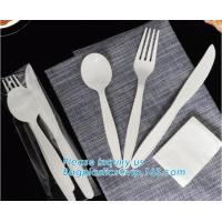Biodegradable disposable cutlery eco friendly plastic CPLA cutlery,Disposable Biodegradable Corn Starch Cutlery/Spoon