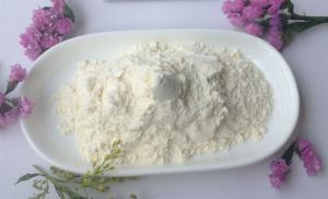 China White Garlic Extract Powder , 20% 25% Allicin Powder Extract For Aquaculture on sale