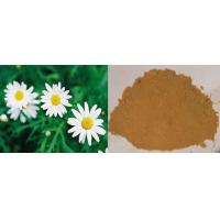 China 100% natural Feverfew P.E 0.3%, 0.8% parthenolide powder on sale