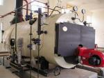 China 10 Ton Natural Gas Fired Steam Boiler wholesale