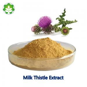 China China wild herbal dietary supplement milk thistle seed extract medicine raw material for liver on sale