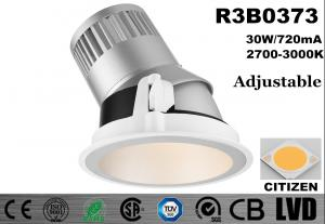 China 30W Tilatble 30 Deg LED Recessed Downlight COB High Brightness Dia 186 * H 191MM on sale