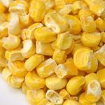 Venta al por mayor liofilizada mejor liofilizada barata de la comida de los corazones de maíz del grano