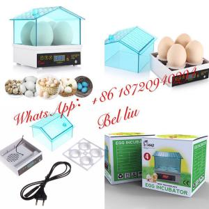 China 4 eggs professional digital chicken egg incubator hatcher 4 eggs incubator on sale