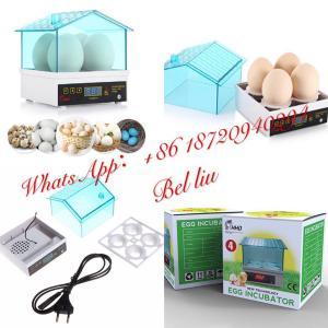 China HHD Brand Small Automatic Egg Incubator 4pcs Egg Capacity EW9-4 US $12 on sale